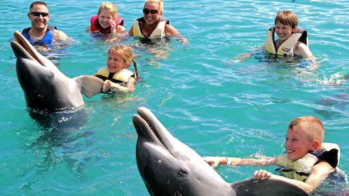 Kids swimming with dolphins in bahamas