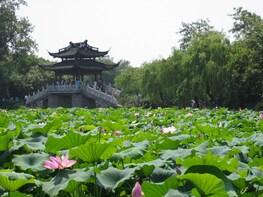 上海至杭州連西湖遊船私人一日遊
