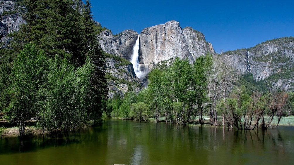 Ver elemento 4 de 10. Serene view of Yosemite National Park during a sunny day at the  Yosemite Village