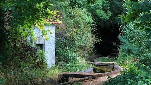 small building in forested area in portugal