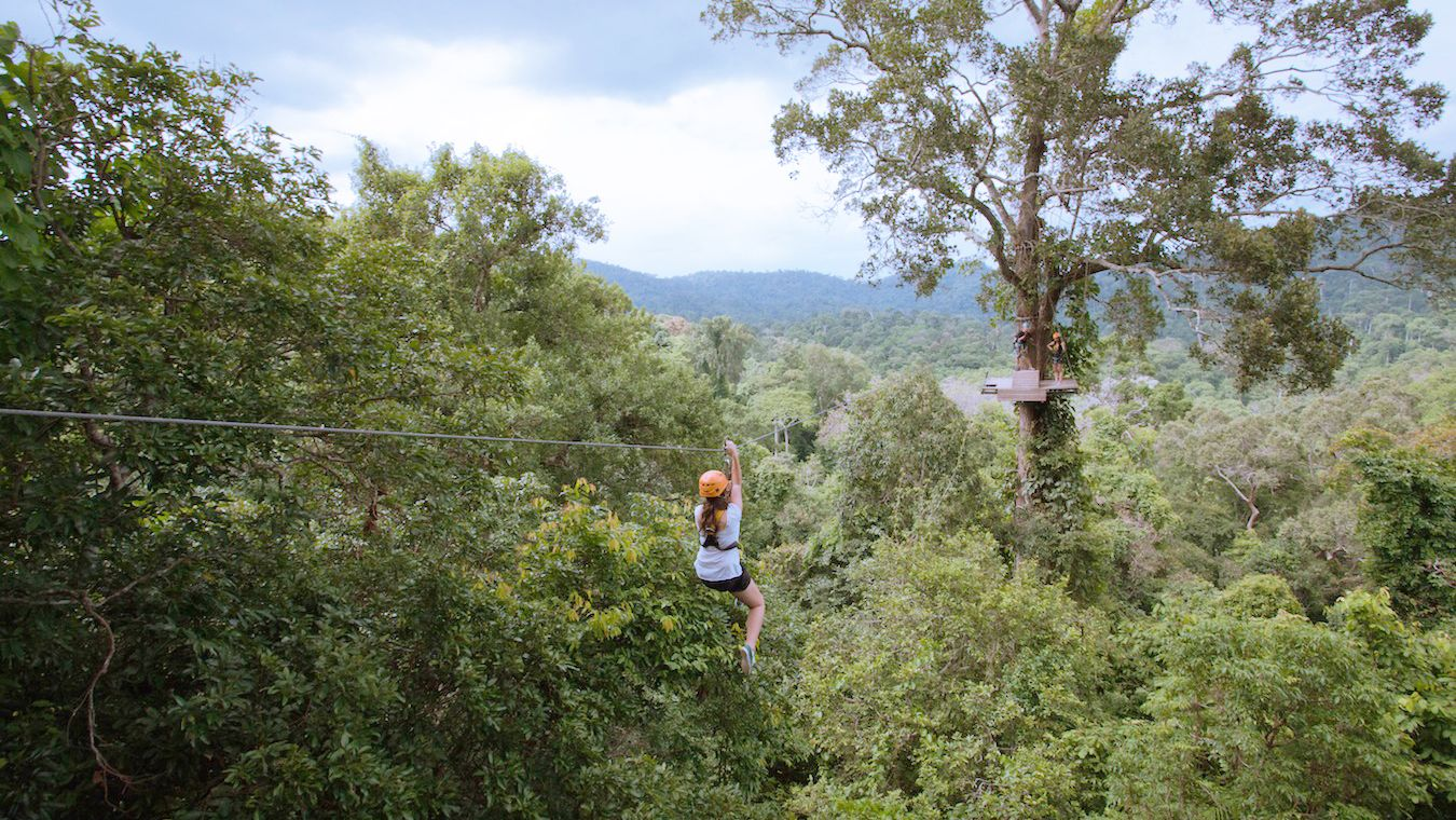 A woman ziplines through the trees
