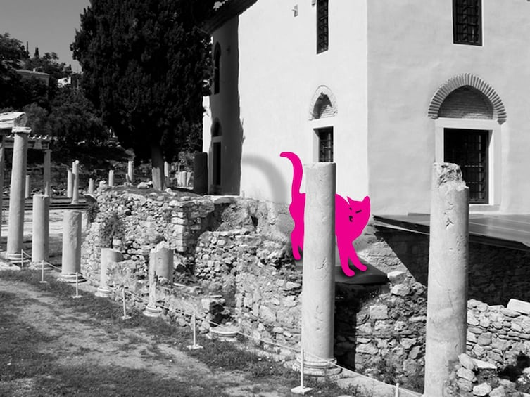 Show item 4 of 5. Athens Plaka: Cats of Athens self-guided Virtual Experience