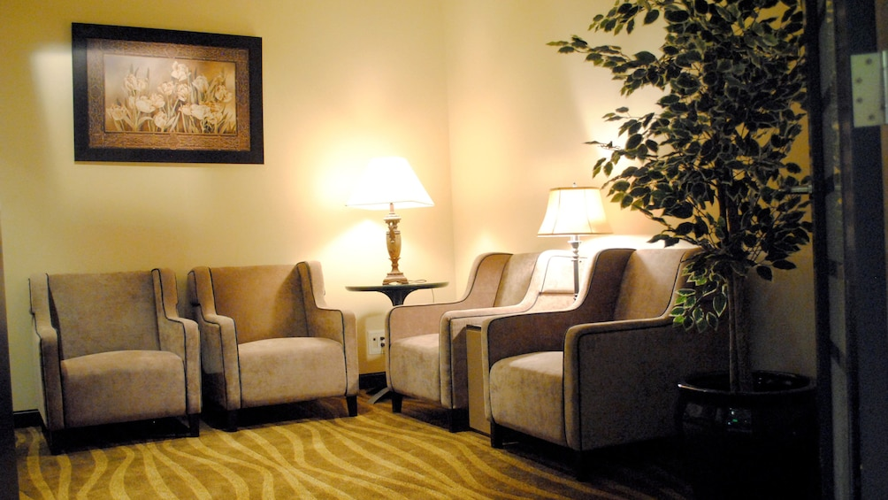 Show item 3 of 5. Couches inside the Plaza Premium Lounge at Edmonton International Airport