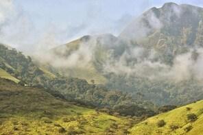 Mount Nimba Hiking