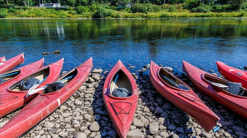 Row of red kayaks on rocks near river.