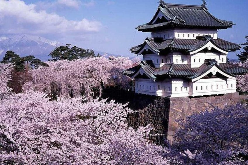 Show item 1 of 7. Hirosaki Full-Day Private Tour with Nationally-Licensed Guide