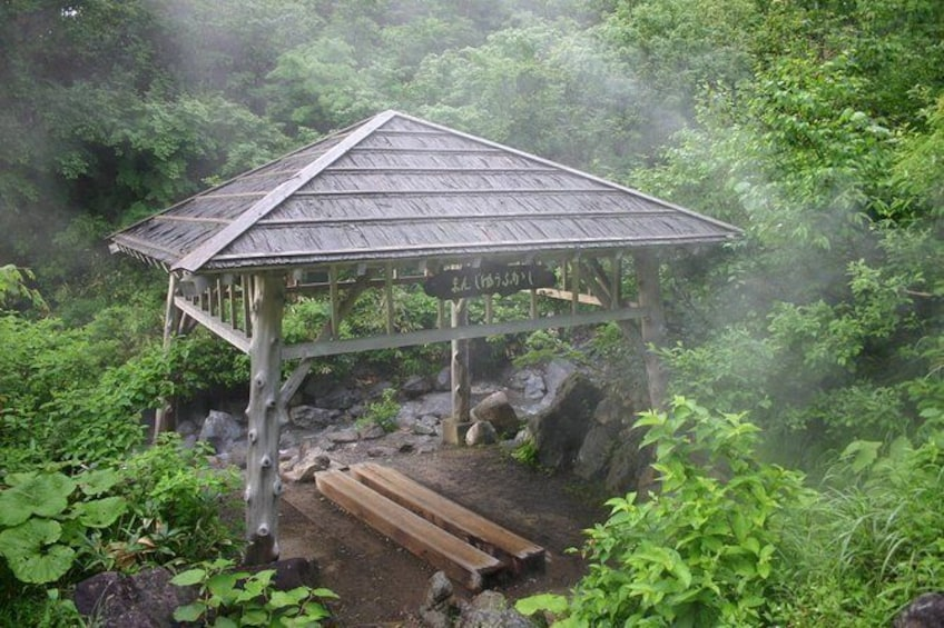 Show item 1 of 6. Full-Day Private Guided Japanese Hot Spring Experience