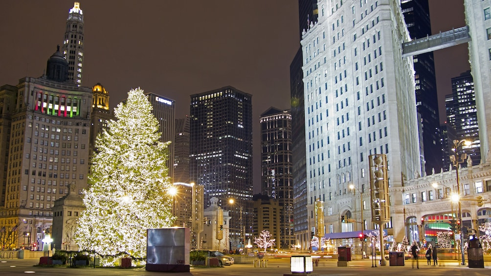 Christmas In Chicago.Chicago Holiday Lights Trolley And Christmas Market