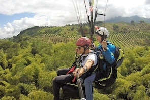 Flying Paragliding Day Trip at Buenavista