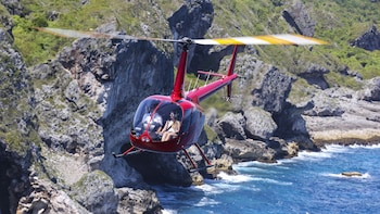 Helicopter Flight - Sightseeing Tour