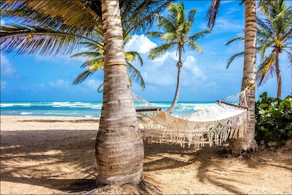 Dominican Culture Tour With Beach Horseback Ride