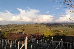 Abellonio Cascina Piccaluga - visit to the vineyards, to the wine tasting c...