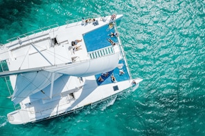 Champagne Brunch & Aqua Safari - Excursion en catamaran de luxe