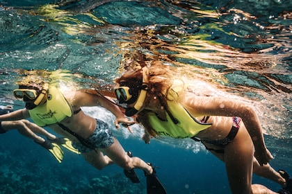 Champagne Brunch & Aqua Safari
