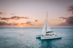 Sunset Sailing Cruise by Catamaran with Snacks & Cocktails