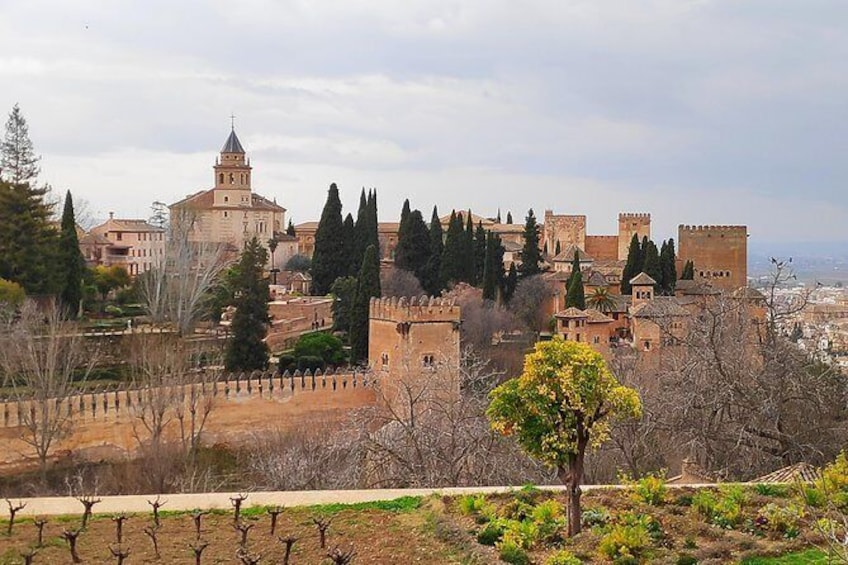 Show item 7 of 7. Excursion to Granada with guided visit to the Alhambra from Almería
