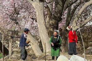 2 Days Tashkurgan Private Tour from Kashgar with Accommodation