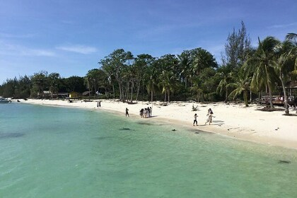 Mantanani Island Day trip Snorkeling