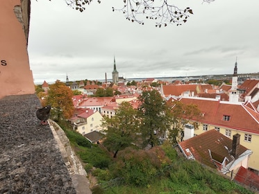 Private Tallinn day trip with guided walking tour
