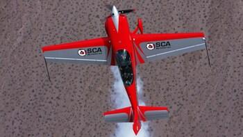 Sky Combat Wingman