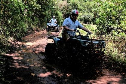 ATV SL 4.jpg