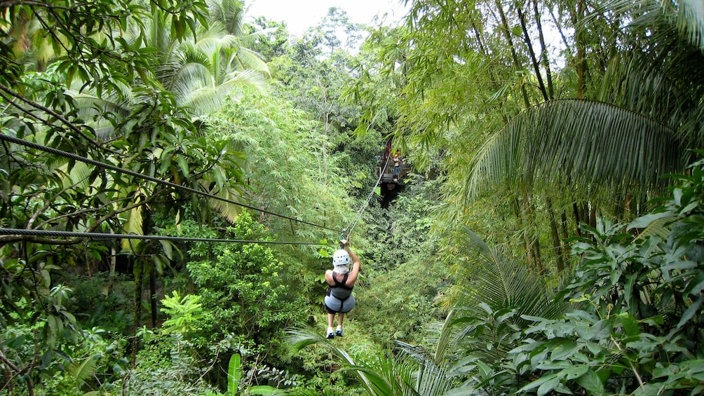 Show item 3 of 8. ziplining towards a canopy in the rainforest in Antigua