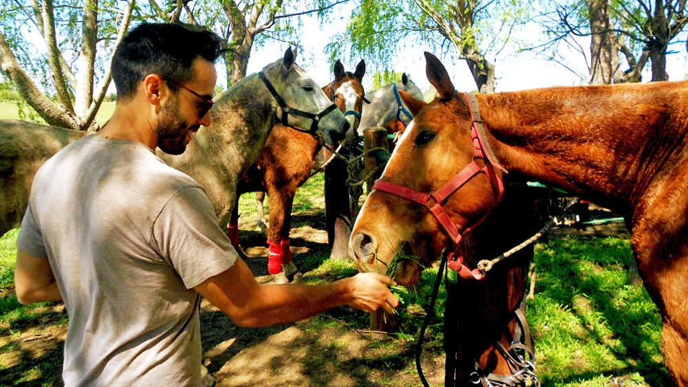 Man feeding a horse on the Argentina Polo Day tour in Argentina
