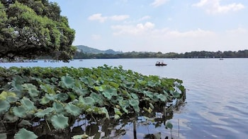 Private Day Tour to Hangzhou from Shanghai