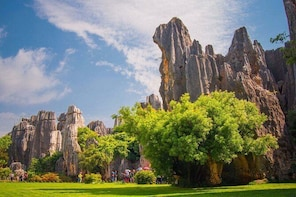 Private Full-Day Tour from Kunming: Stone Forest and Golden Temple