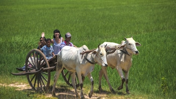 Chansor Village Full-Day Excursion