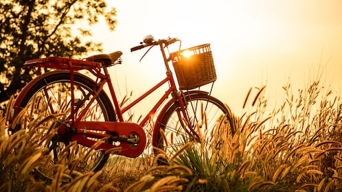 bicycle in sunrise scene in Jakarta