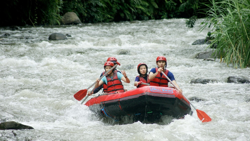 Show item 2 of 7. Group on a white water rafting trip in Bali