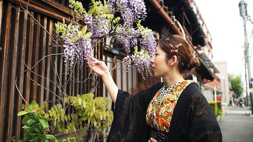 woman in tradition japanese costume touches a flower