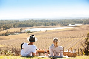 Picnic Among the Vines at Audrey Wilkinson Vineyard