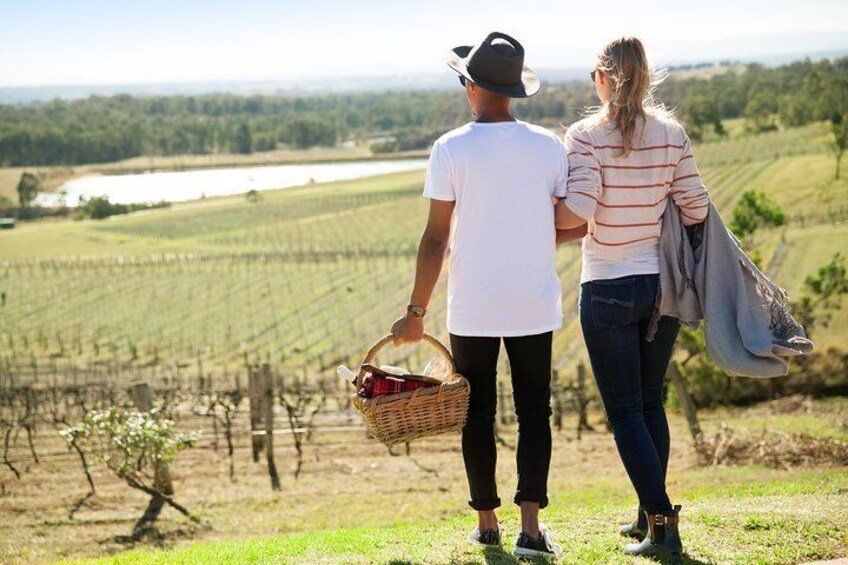 Audrey Wilkinson Vineyard: Picnic with Wine Masterclass Tasting