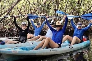 PRIVATE Kayak Tour Barefoot Beach Preserve Magical Mangrove Estuary Adventu...