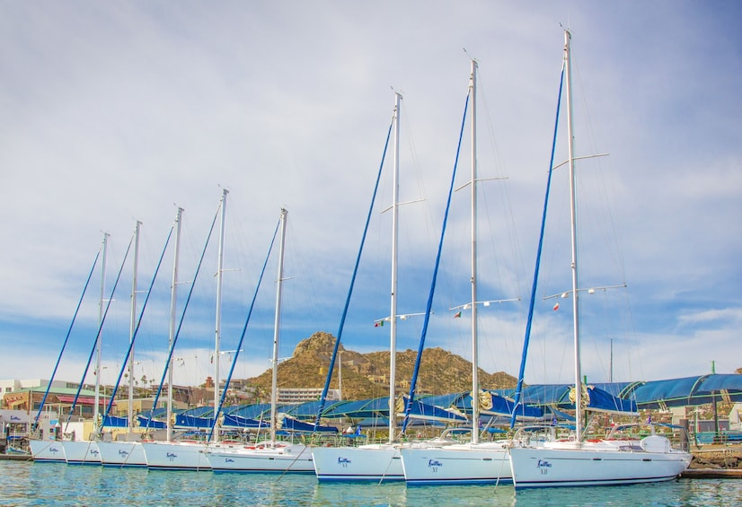 Luxury Sailing and the Famous arch