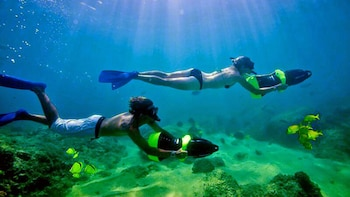 Snorkel & Sea Adventure with visit to the famous arch