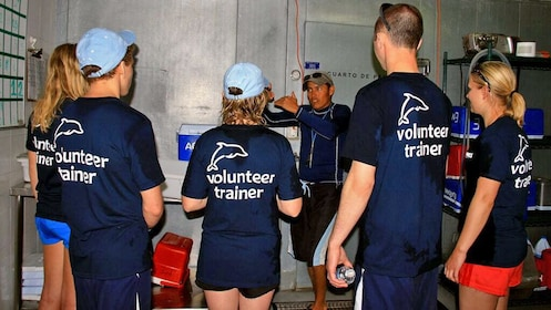 Group getting instructions on dolphin training in Los Cabos