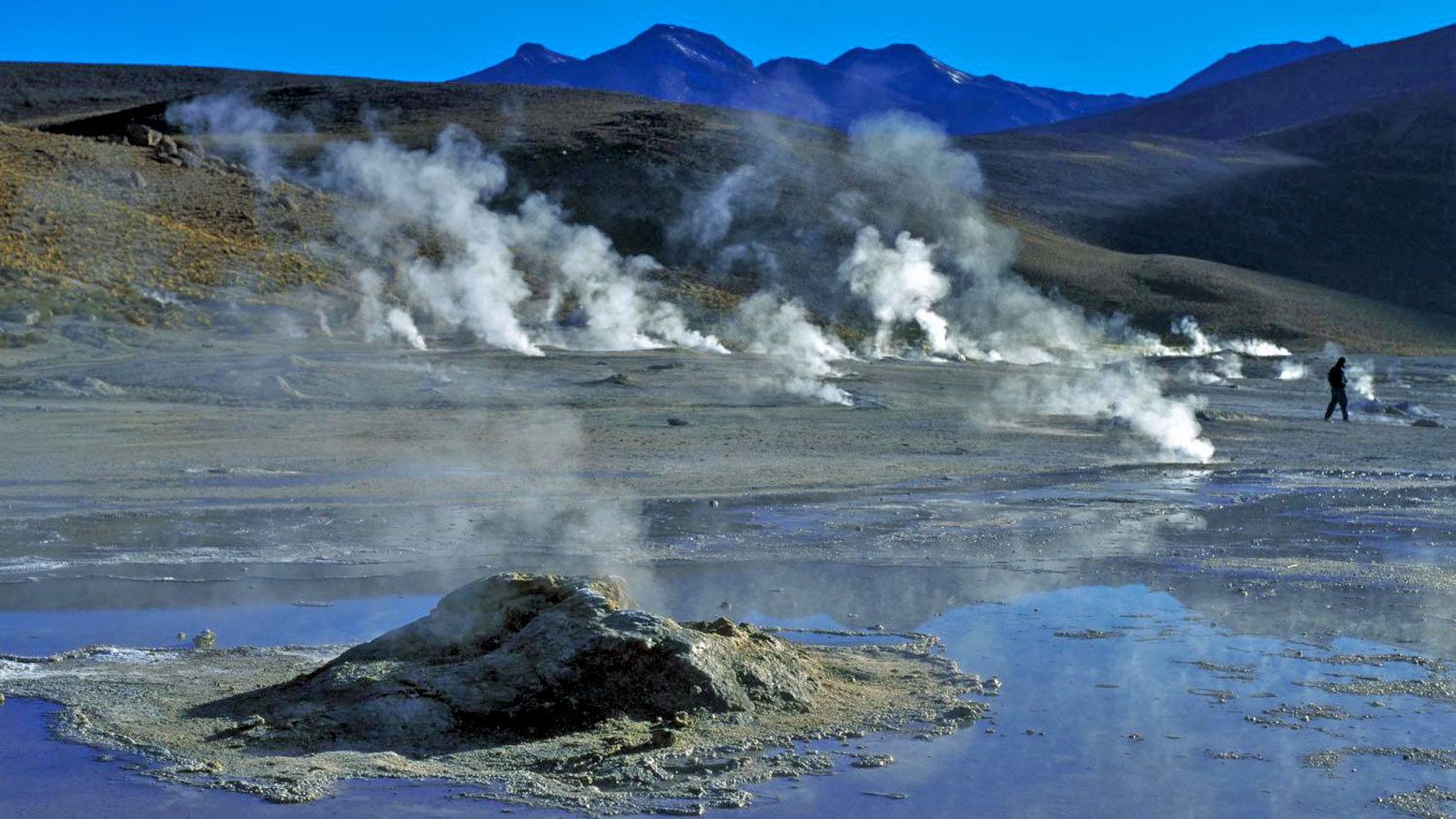 Field of steaming geysers in Chile