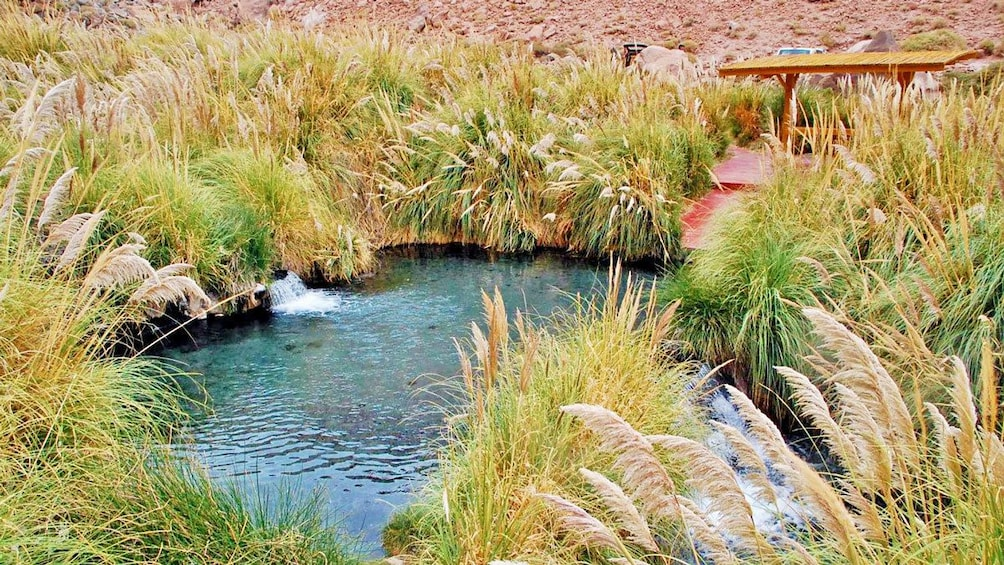 Show item 1 of 6. Natural hot spring in San Pedro de Atacama