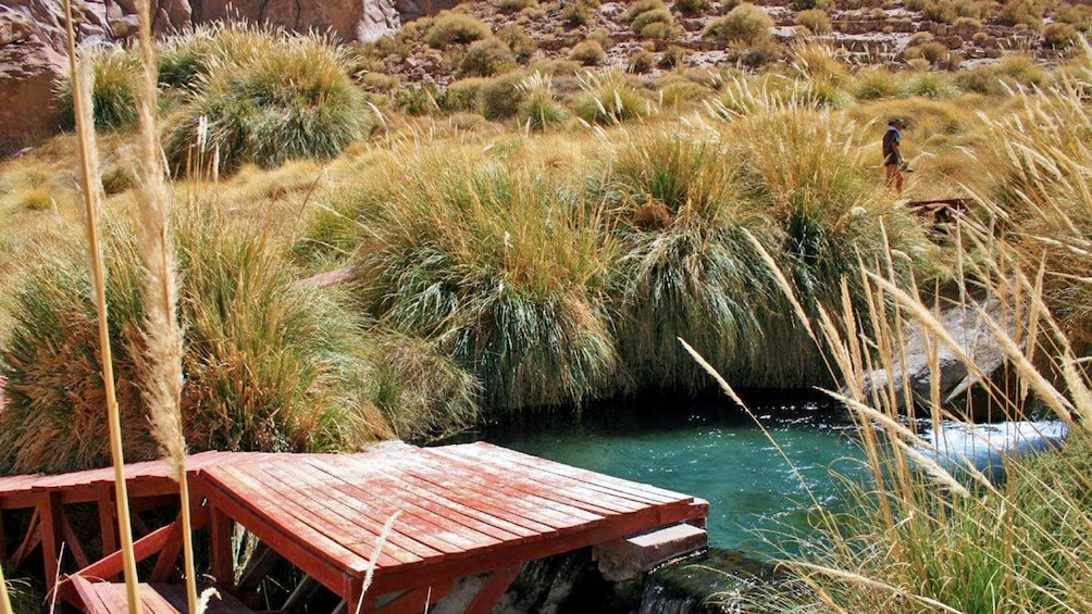 Show item 3 of 6. Wooden platform on the edge of a hot spring in Chile