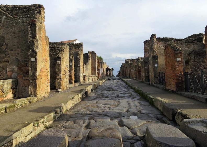 Charger l'élément 5 sur 8. Half-Day Tour of Pompeii from Naples