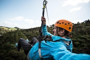 Adventurous Eco Zipline Tour in Coromandel