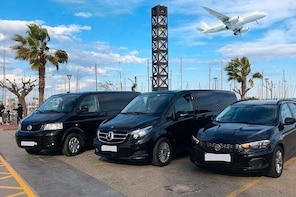 Southwest Airport (RSW) to Fort Meyers downtown - Arrival Private Transfer