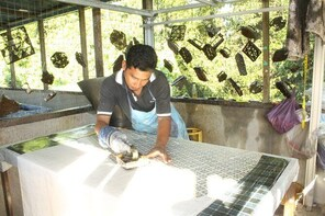 3D2N Stay in traditional house, learn to do BATIK print & explore Kota Bhar...