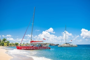 Catamaran Cruise, Snorkel & Beach Experience at Cades Reef