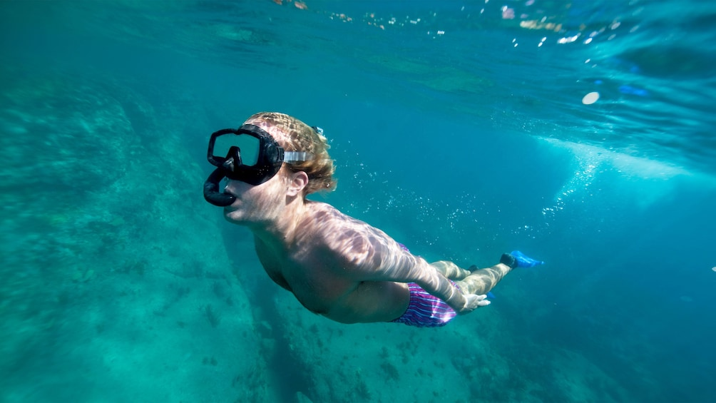 Show item 3 of 9. Snorkeling boy in Antigua