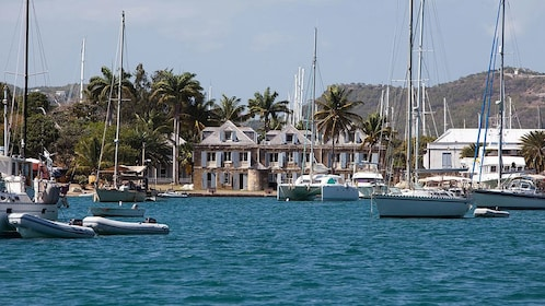 sail boats anchored in a harbor in Antigua