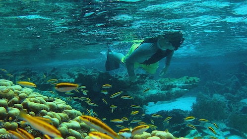 A man snorkeling in crystal blue waters in Antigua